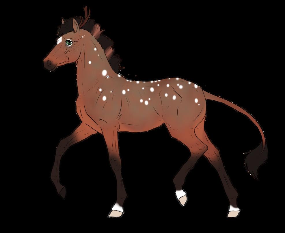 N3066 Padro Foal Design for mylastaccount by casinuba