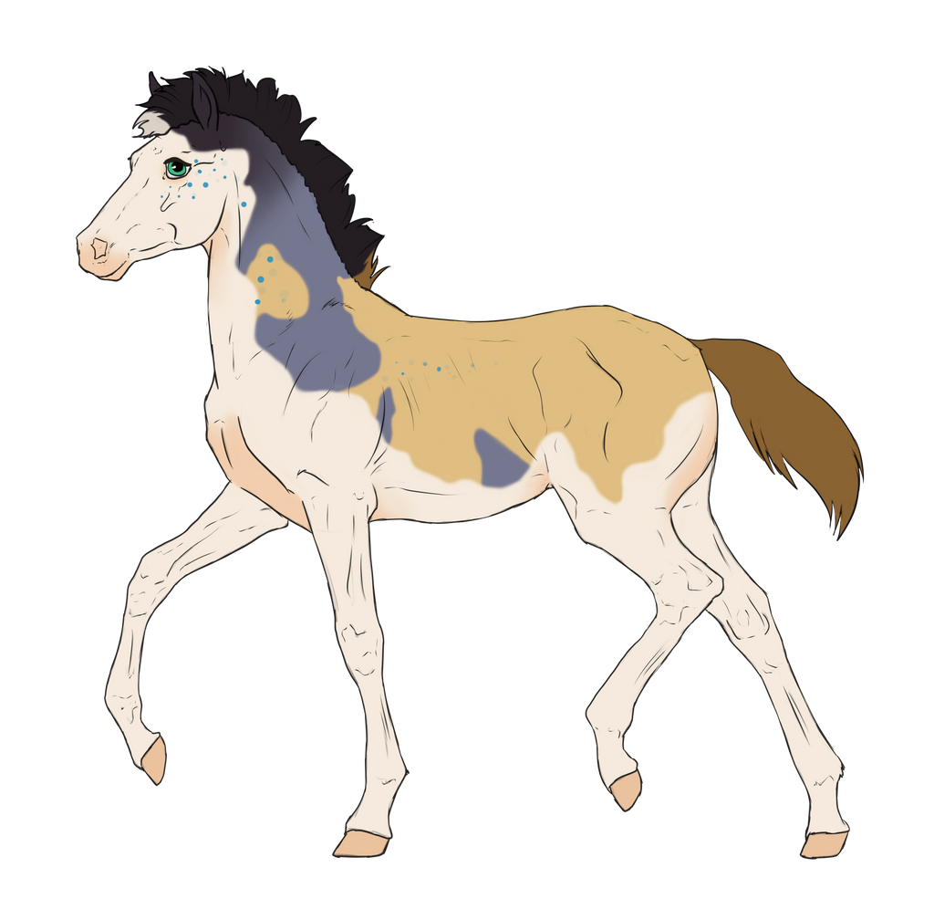 N3111 Padro Foal Design for mylastaccount by casinuba