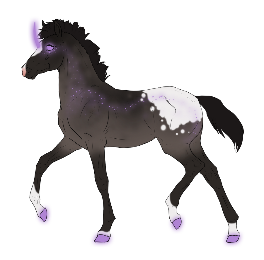 N3092 Padro Foal Design for ForestSpirit31 by casinuba
