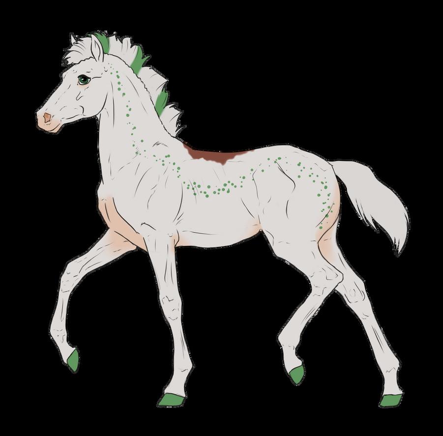 N3137 Padro Foal Design by casinuba