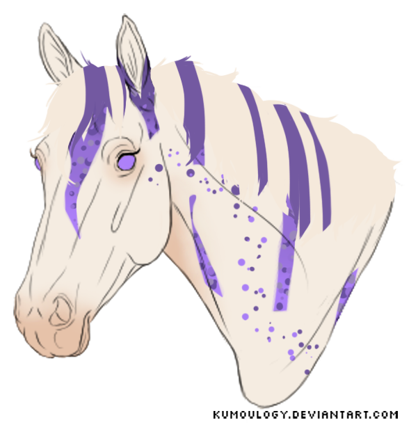N1736 Lavender by casinuba