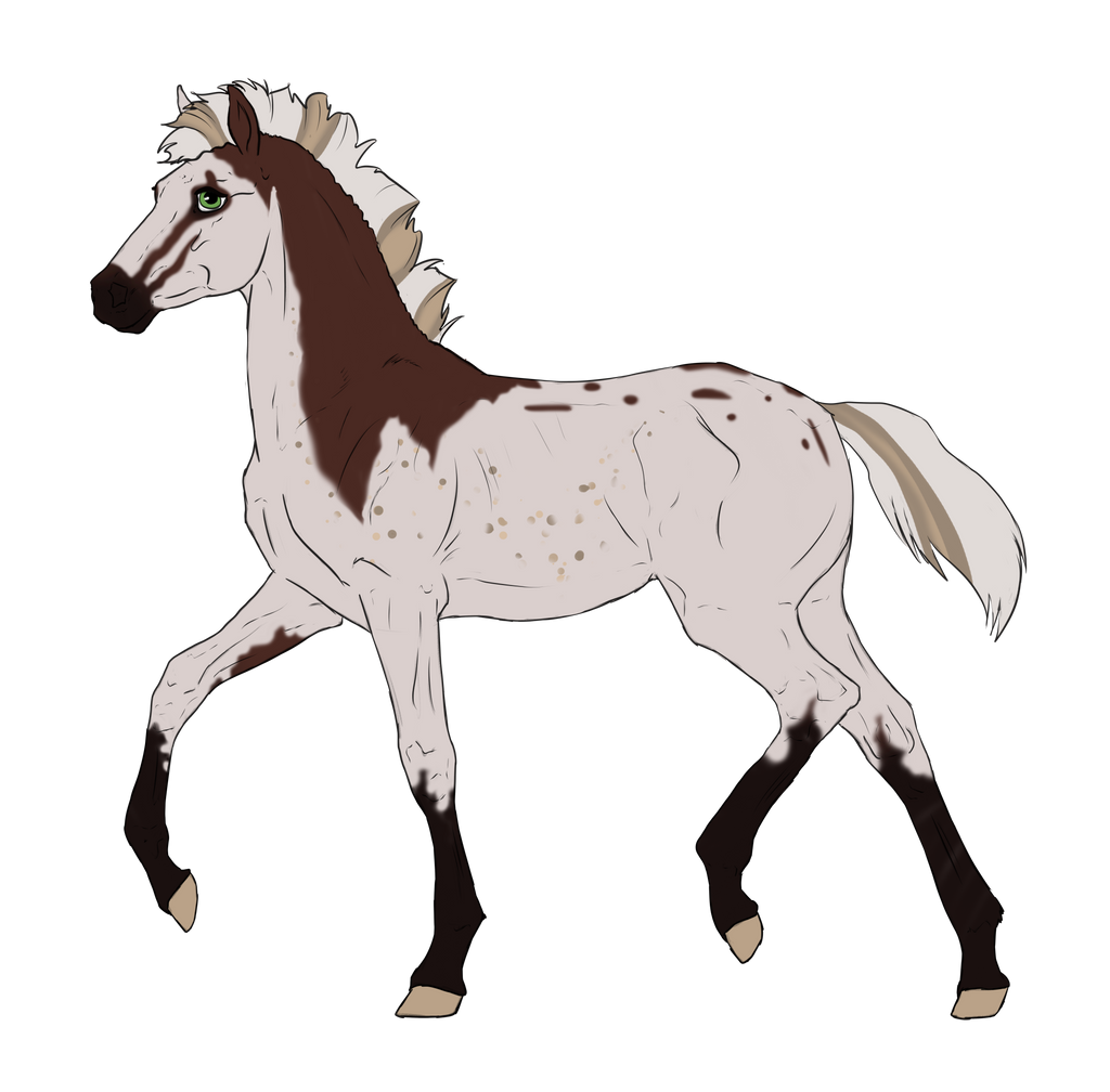 N3186 Padro Foal Design by casinuba