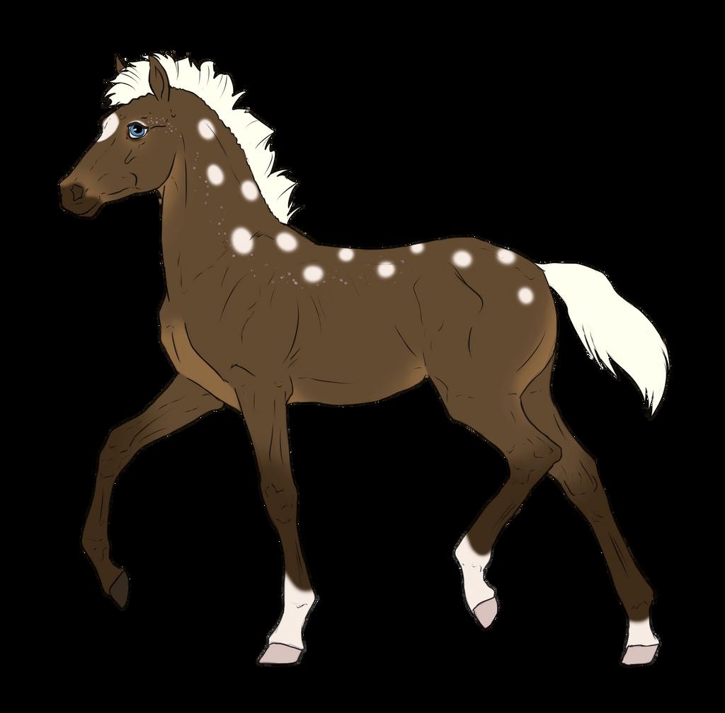 N3212 Padro Foal Design by casinuba