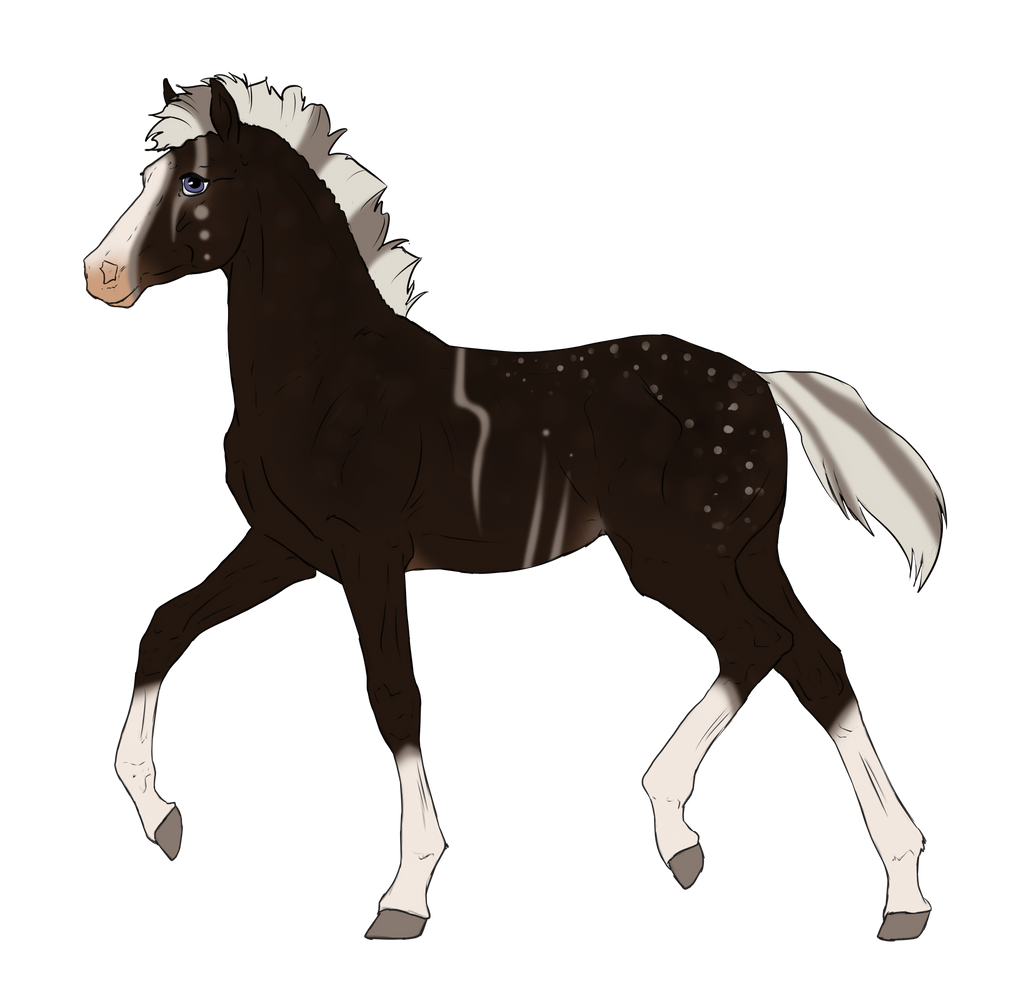 N3211 Padro Foal Design for horses0101 by casinuba