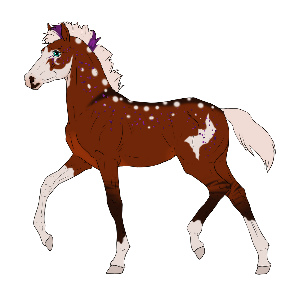 N3233 Padro Foal Design for Nabashta by casinuba