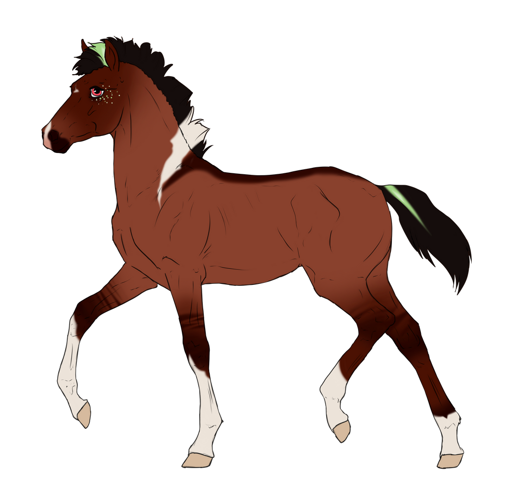 N3239 Padro Foal Design for IloveWerewolf1 by casinuba