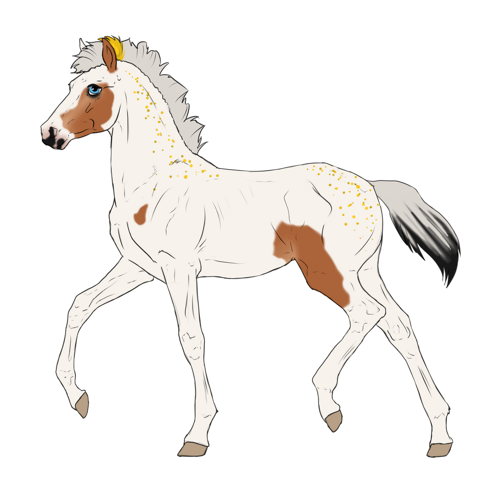 N3304 Padro Foal Design by casinuba