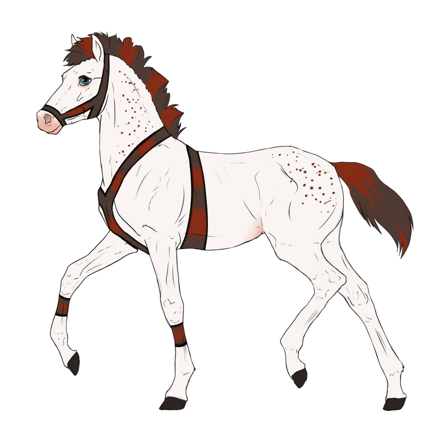N3308 Padro Foal Design by casinuba