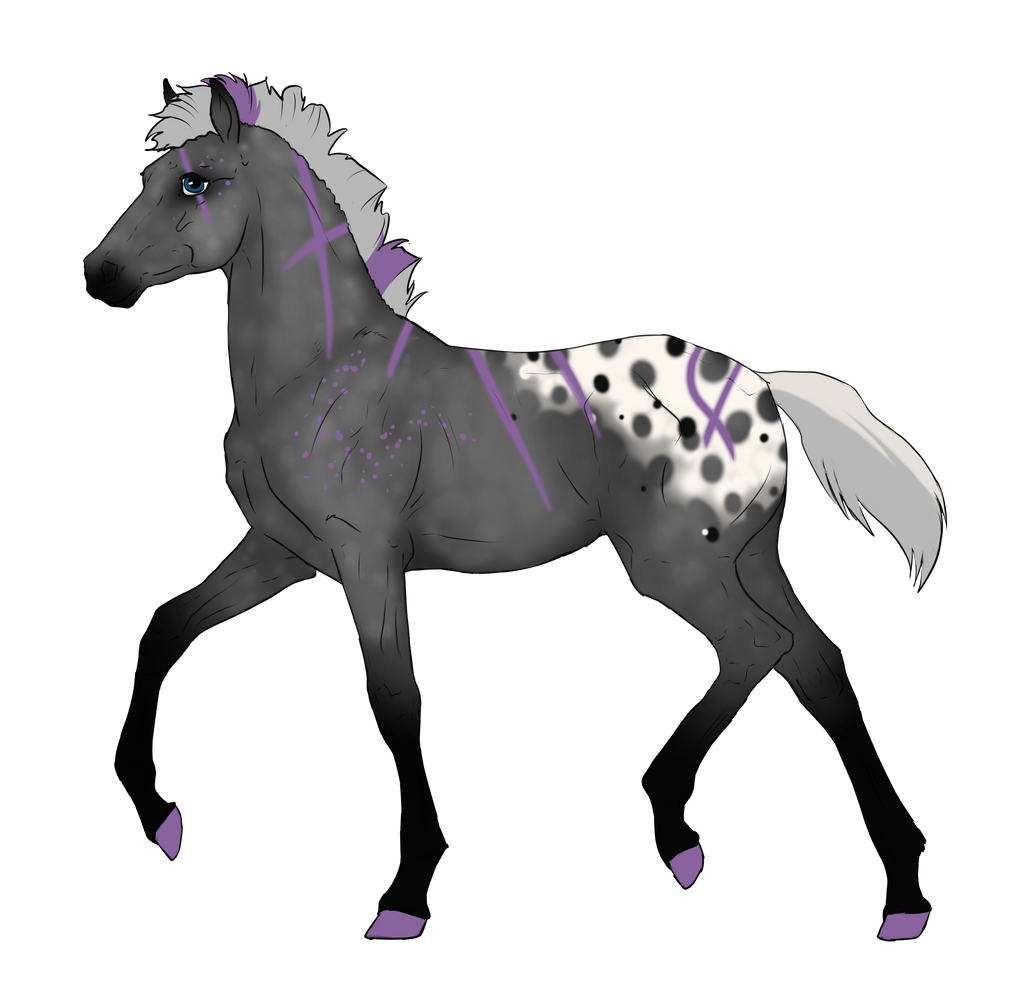 N3309 Padro Foal Design by casinuba