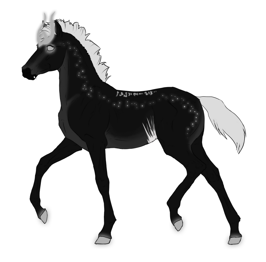 N3311 Padro Foal Design by casinuba
