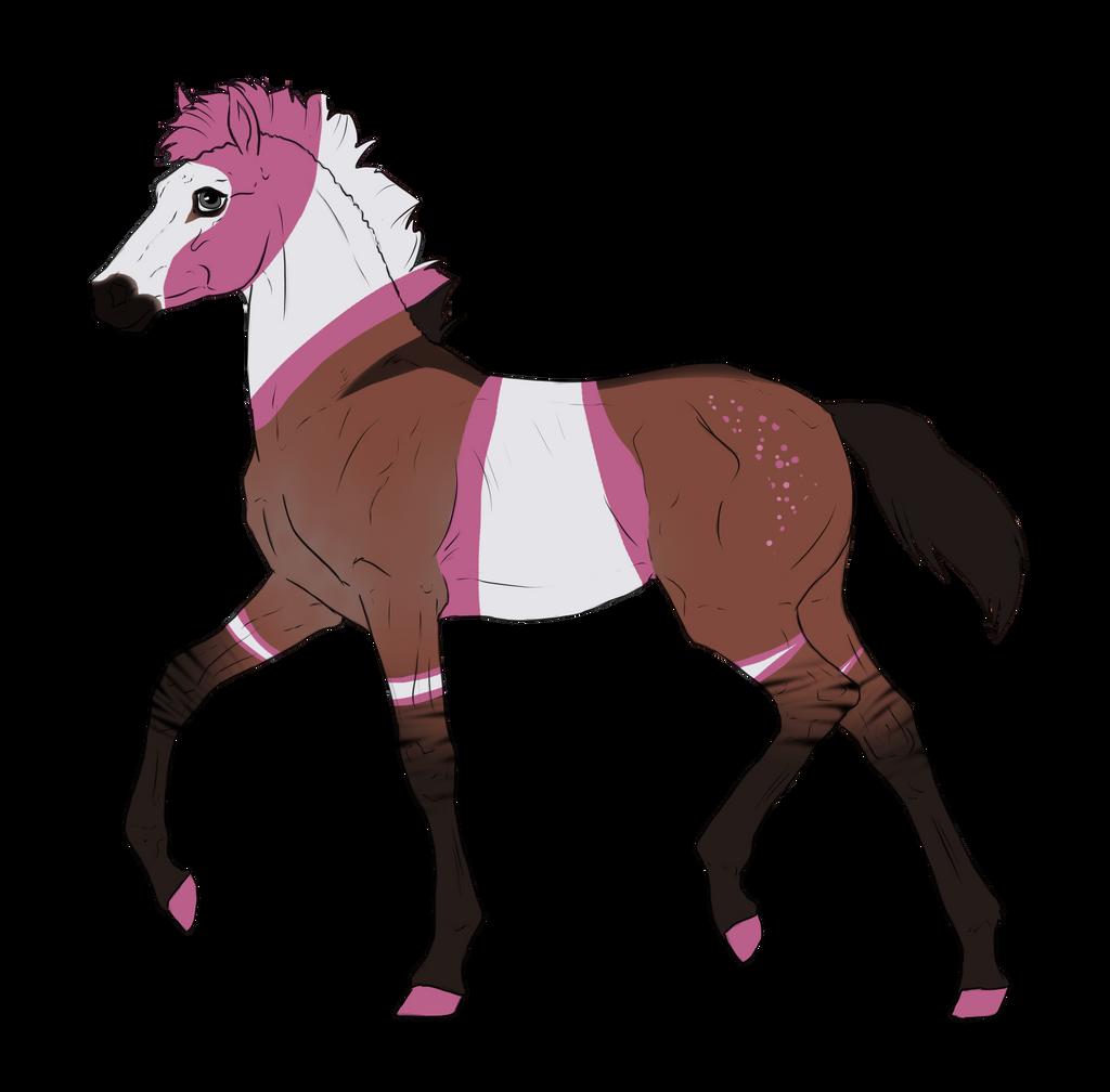 N3312 Padro Foal Design by casinuba
