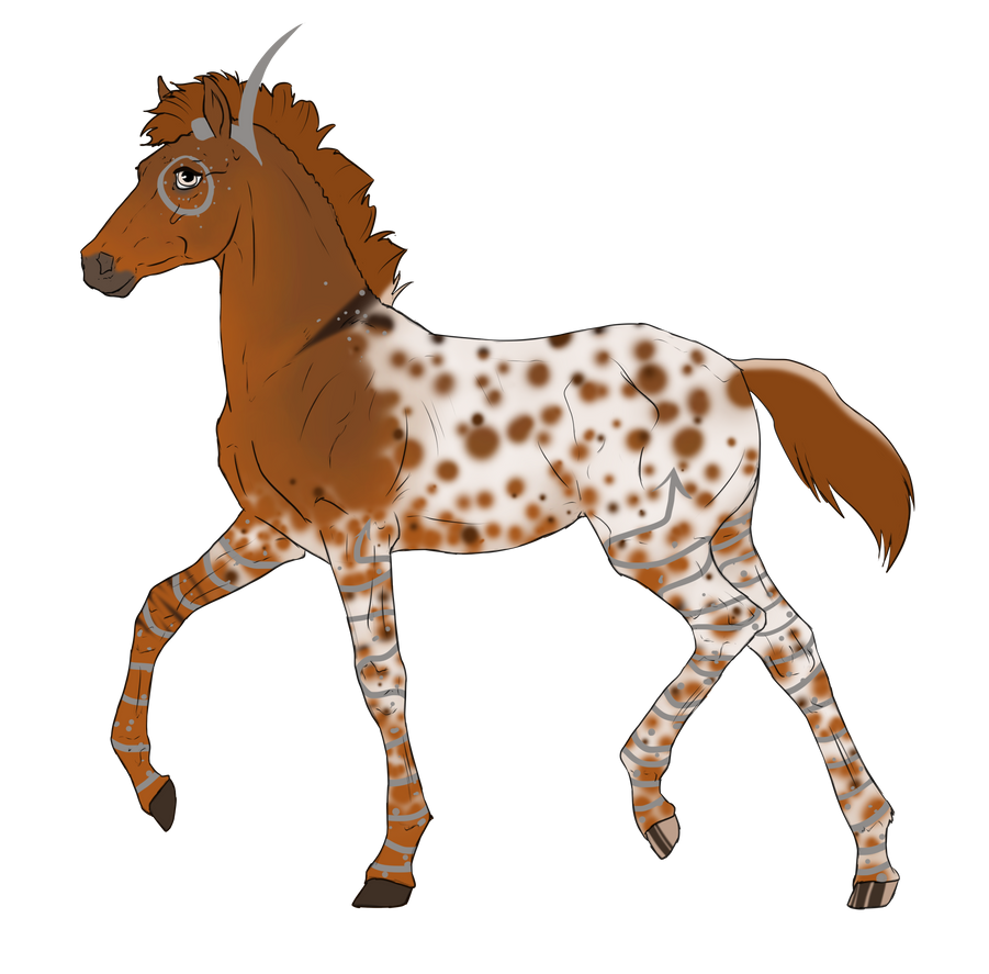N4007 Padro Foal Design for Saydie by casinuba