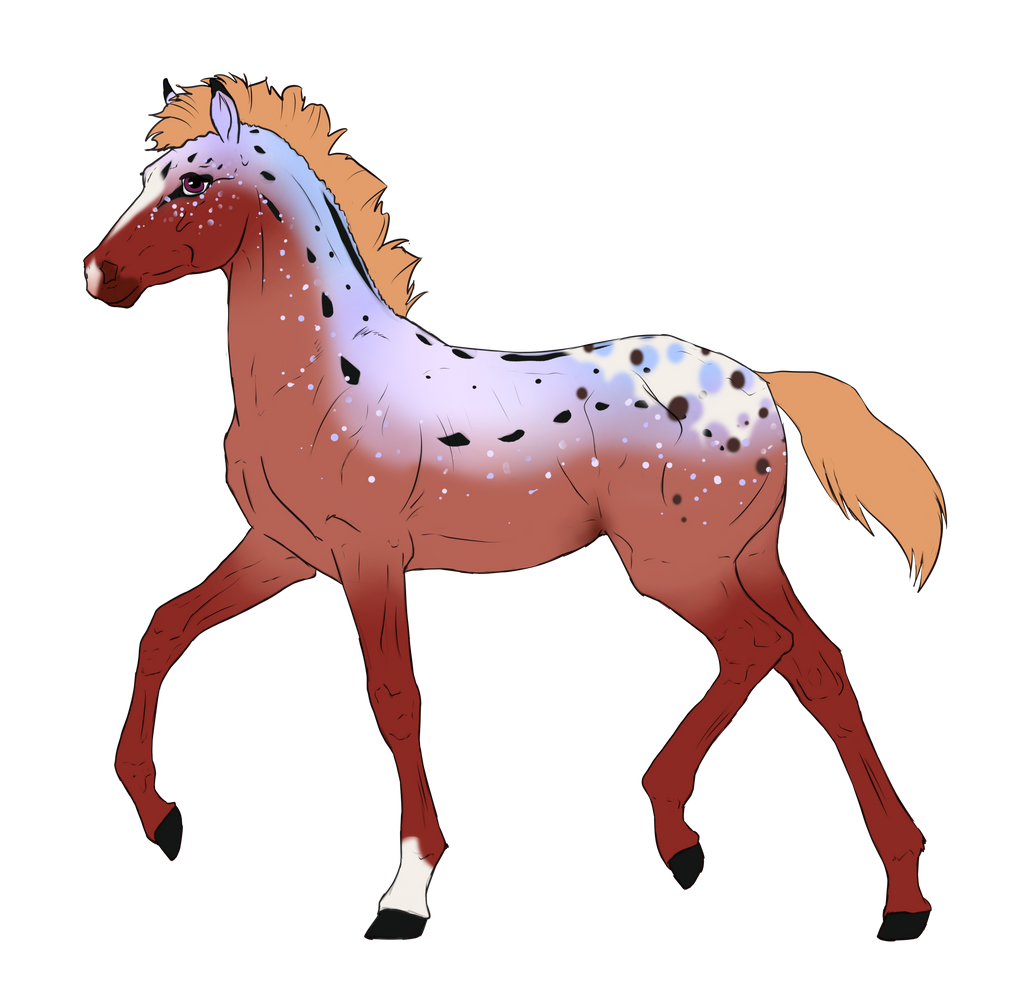 N3499 Padro Foal Design for DarkestNation by casinuba