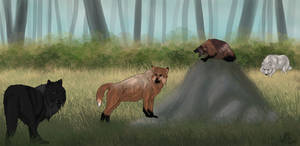 Wolverine Hunting