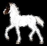 N7245 Padro Foal Design