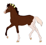 N7221 Padro Foal Design for xiamant