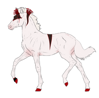 N7155 Padro Foal Design for Kandy918
