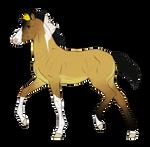 N7357 Padro Foal Design