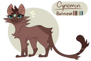 Cynomin reference sheet 2018 by Cynomin