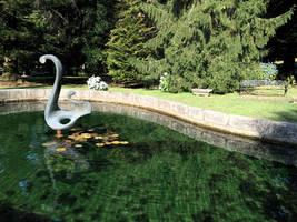 Castle Stock (51) Pond