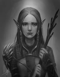 DA:O The Warden by rieko1910