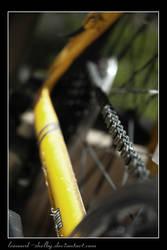 where is my bike? by leonard-shelby