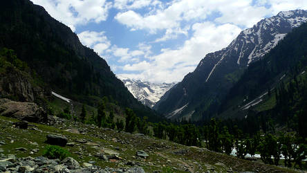 Kashmir by leonard-shelby