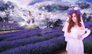 Lavender Park - Levendula liget