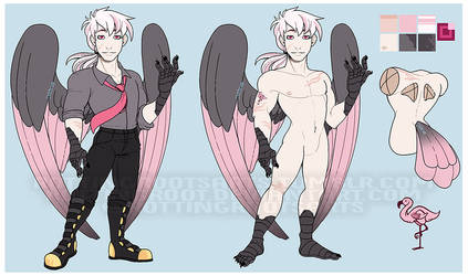 Harpy Boy Reference by RottingRoot
