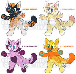 Cute Kitty Adopts Set 3 2/4 OPEN price lowered $5