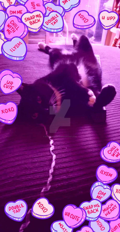 Valentine's Kitty by cometgazer379