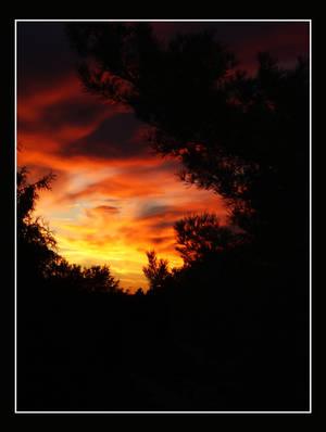 Sky's Afire