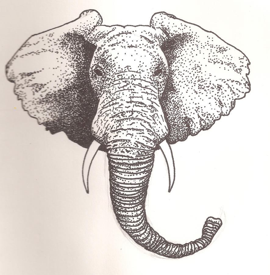 Elephant side profile art