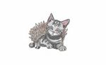 Day 6- kitten/hedgehog