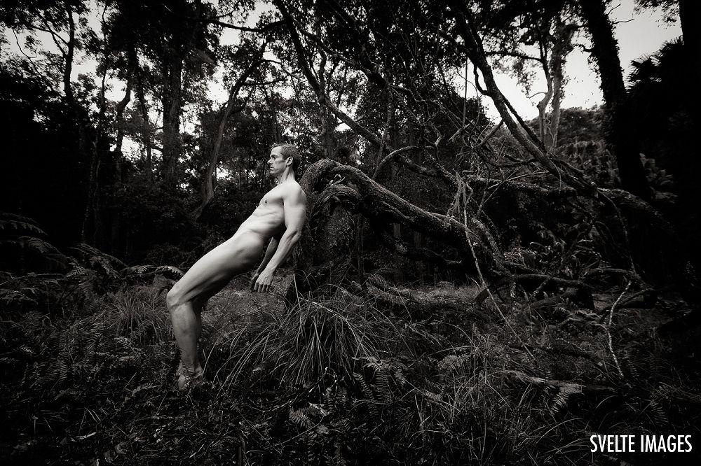 Wood and Trees by Kedori