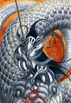 ''Dragon''slayer