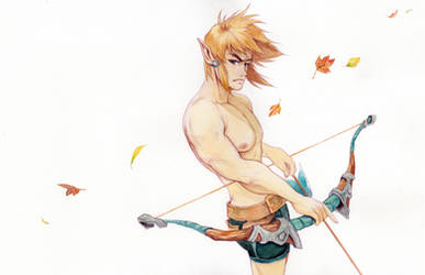 Link, Breath of the Wild by J2Dstar