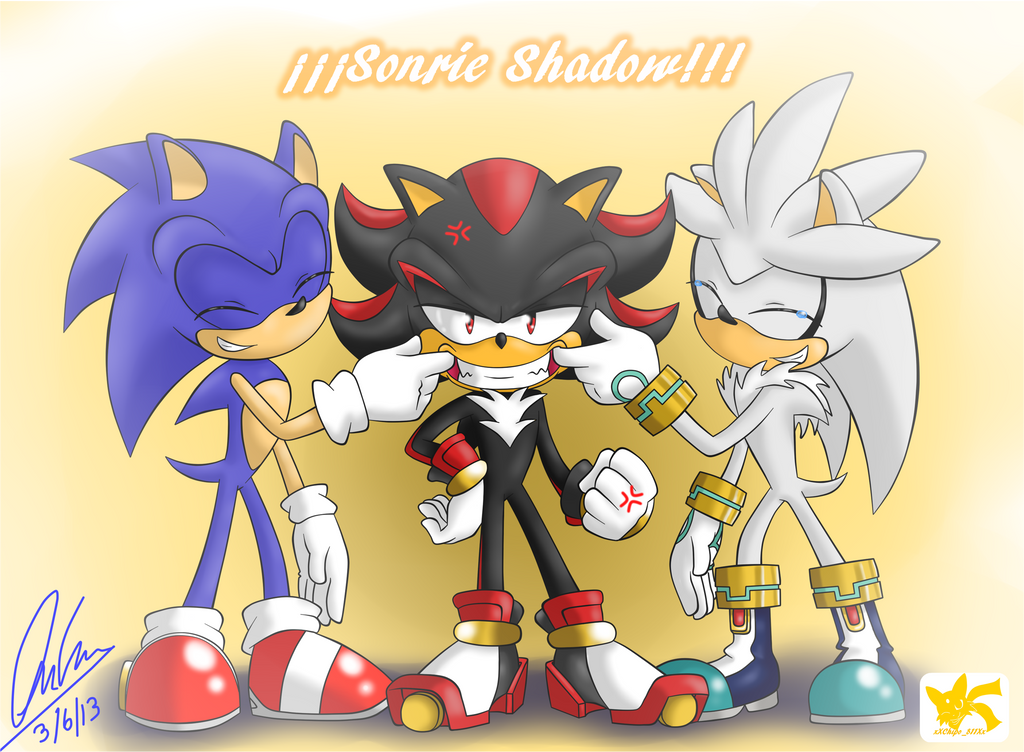 Silver the hedgehog wallpaper 2013