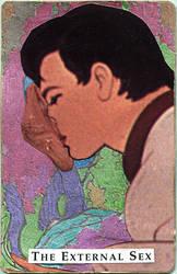 External Sex by randoymwordsart