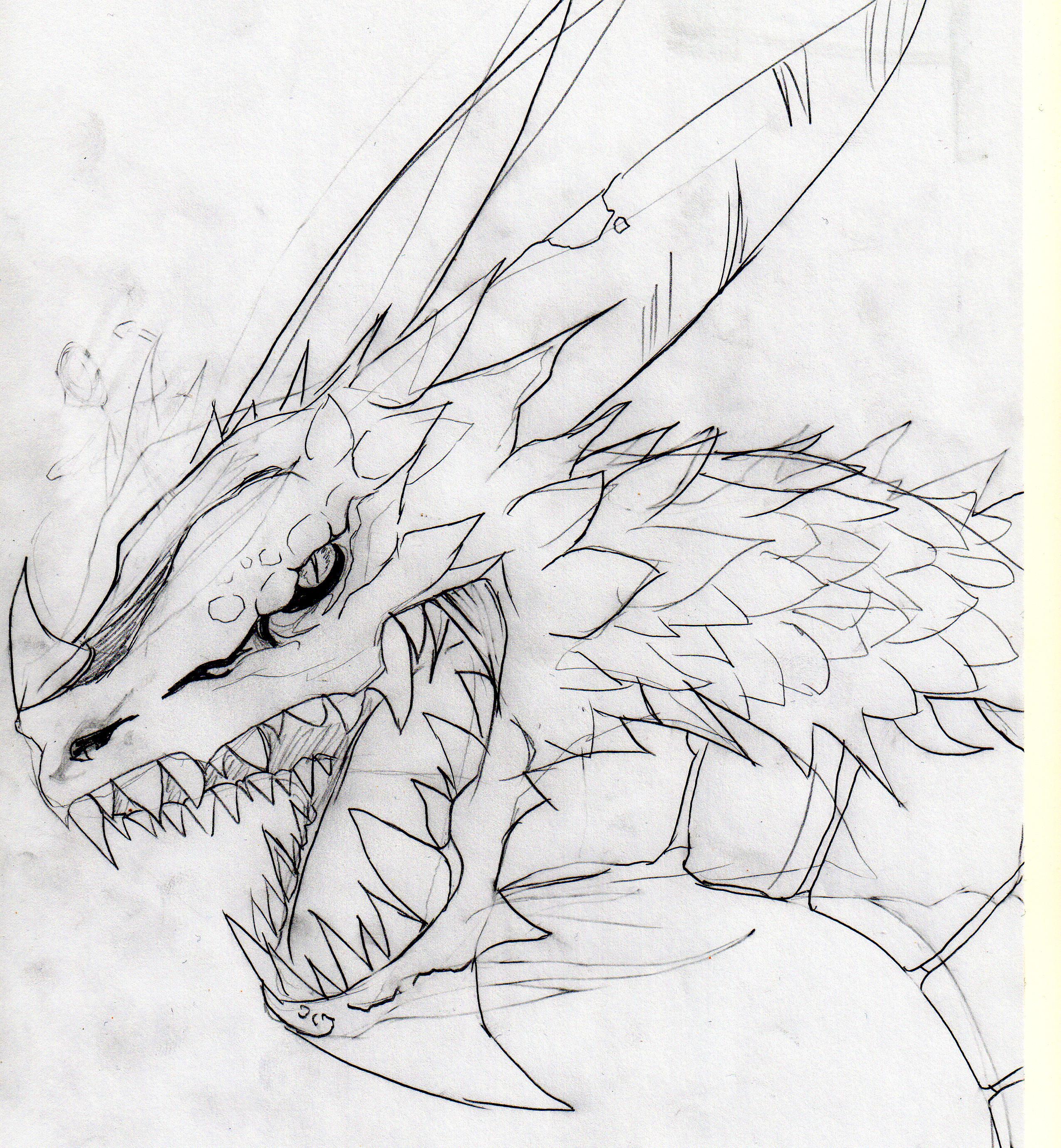 dragon draft drawing by chetz on deviantart