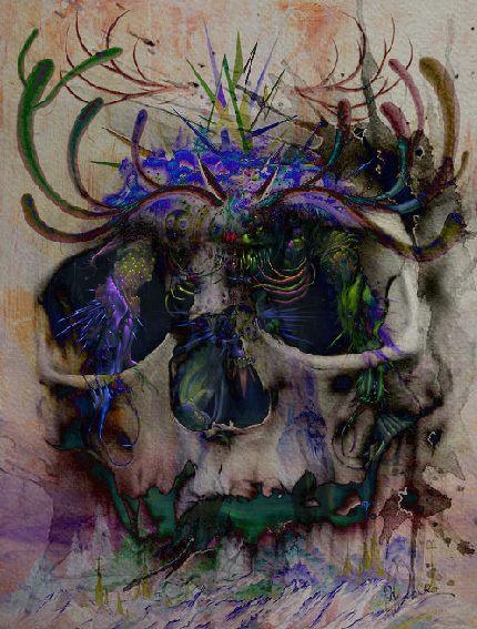 Skull by Boojaybabe