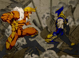 wolverine vs sabretooth by wolverine22