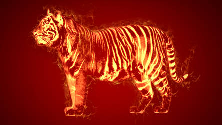 Flame Tiger