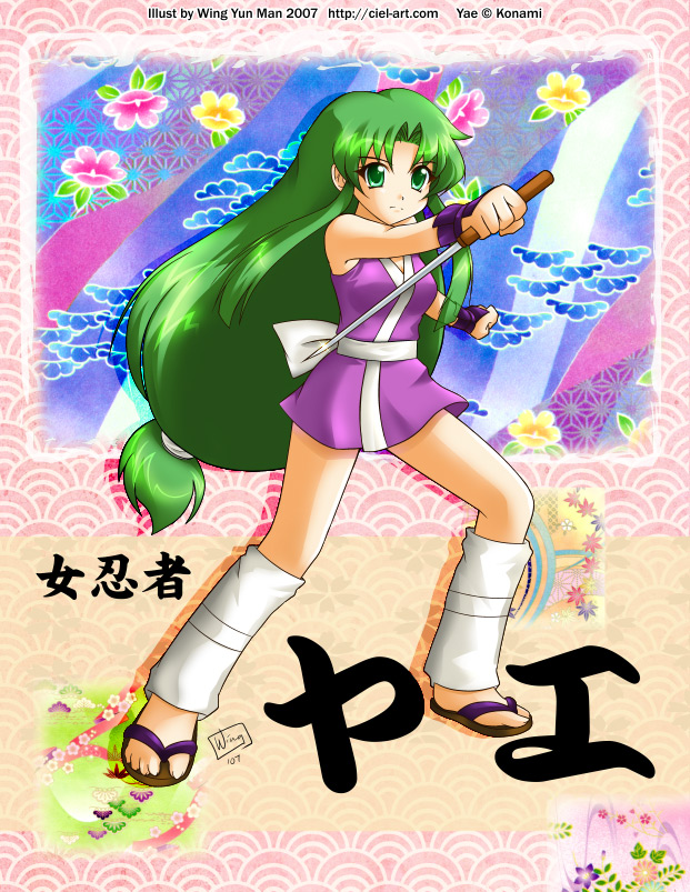 Lady Ninja Yae by kurokumo