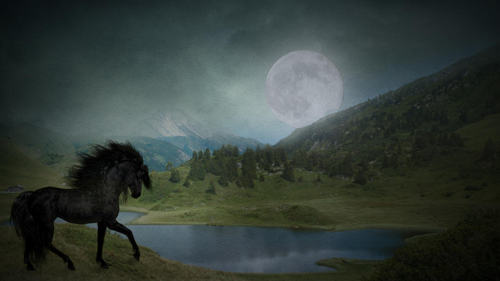 Black Beauty at Moonlight by eclipsyz