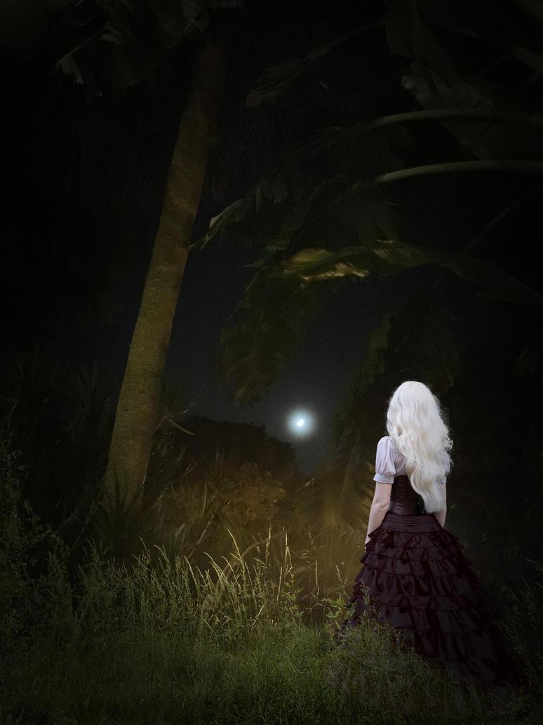 Backyard Moonlight by eclipsyz