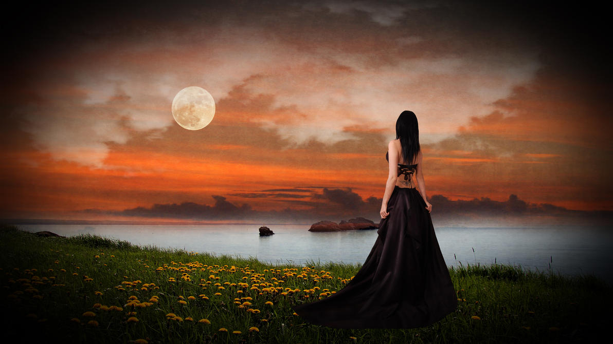 Orange Evening by eclipsyz