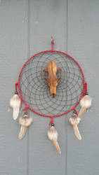 Fossil Coyote Dreamcatcher