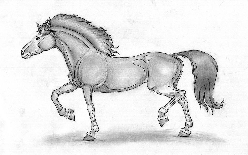 Trotting horse by SusannaNO2 on deviantART