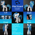 Vinyl Scratch custom